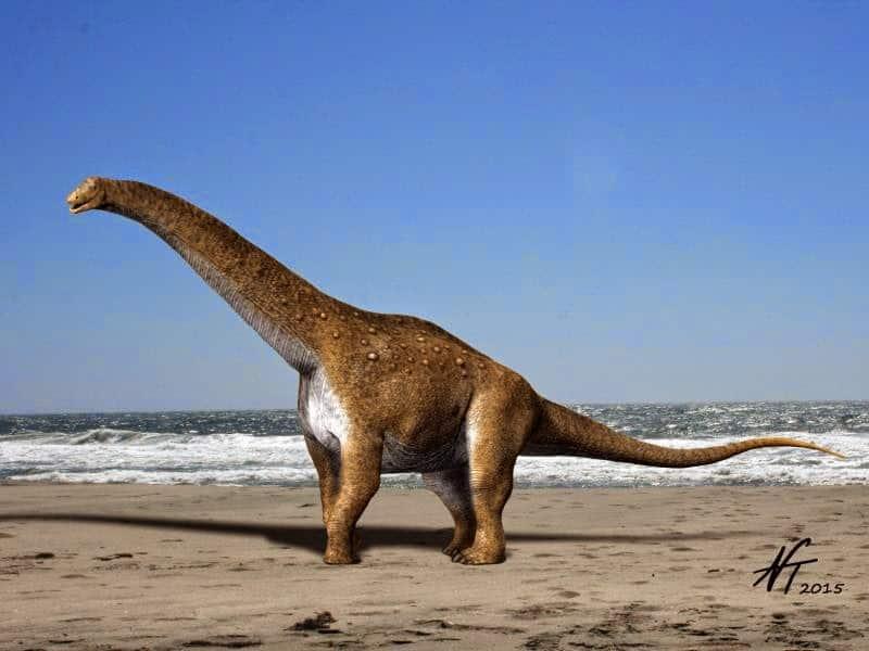 Hypselozaur - reproducere artistică