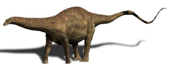 Ilustraţie Rebbachisaurus
