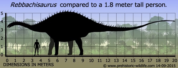Mărime Rebbachisaurus
